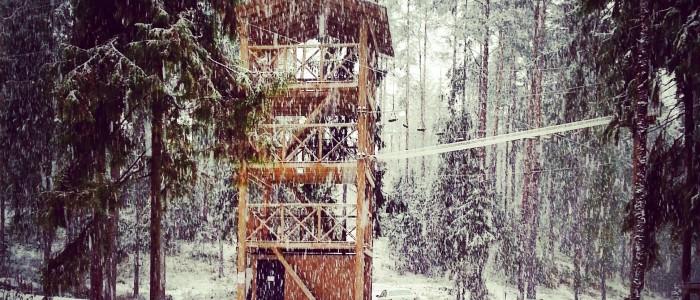 Зима в Ильичево